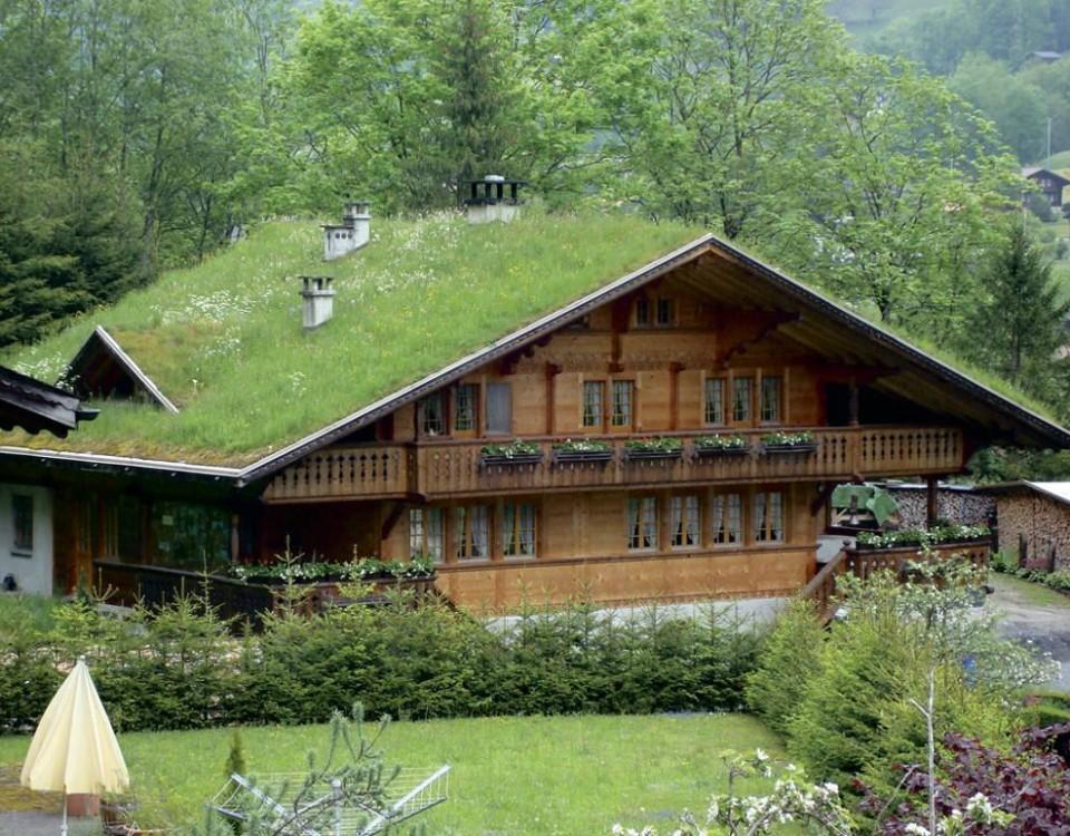 telhado-verde-como-fazer